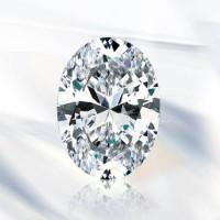 Antropoti-Vip-Club-Concierge-service-Diamond-Shapes-Oval
